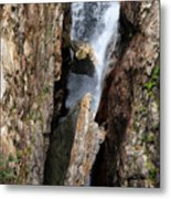 Stuck In The Middle Metal Print by Christine Till