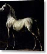 Study Of A Dapple Grey Metal Print by Theodore Gericault