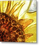 Sunburst Sunflower Metal Print by Jerry McElroy