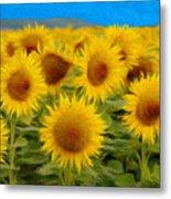 Sunflowers In The Field Metal Print by Jeff Kolker