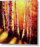Sunlight Through The Aspens Metal Print by David G Paul