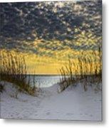 Sunlit Passage Metal Print by Janet Fikar
