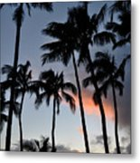 Sunset Palms Metal Print by Kelly Wade