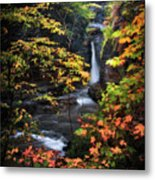 Surrounded By Fall Metal Print by Neil Shapiro