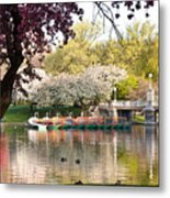 Swan Boats With Apple Blossoms Metal Print by Susan Cole Kelly