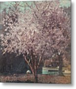 Sweet Kisses Under The Tree Metal Print by Laurie Search