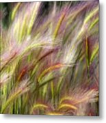 Tall Grass Metal Print by Marty Koch