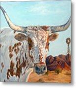 Texas Longhorn Metal Print by Jana Goode