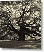 The Angel Oak Metal Print by Susanne Van Hulst