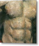 The Boxer Metal Print by Steve Mitchell