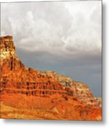 The Condor's Land Metal Print by Christine Till