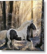 The Crystal Morning Metal Print by Terry Kirkland Cook