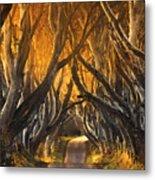 The Dark Hedges IIi Metal Print by Pawel Klarecki