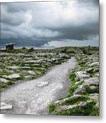 The Dolmen In The Burren Metal Print by Menega Sabidussi