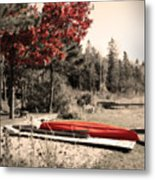 The End Of Summer Metal Print by Cathy  Beharriell