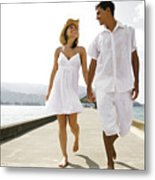 The Happy Couple Metal Print by Kicka Witte - Printscapes