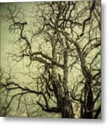 The Haunted Tree Metal Print by Lisa Russo