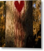 The Lonely Tree Metal Print by Jorgo Photography - Wall Art Gallery