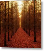 The Red Forest Metal Print by Amy Tyler