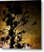 The Sunset Tree Metal Print by Loriental Photography