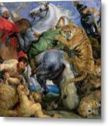 The Tiger Hunt Metal Print by Rubens