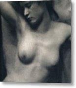 The Torso Metal Print by White and Stieglitz