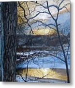 The Watcher Metal Print by William  Brody