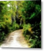 Thoreau Woods Metal Print by Lawrence Christopher