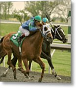 Thoroughbred Racing Metal Print by Samantha Windham