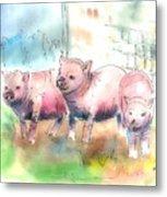 Three Little Pigs Metal Print by Arline Wagner