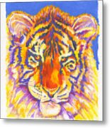Tiger Metal Print by Stephen Anderson