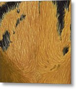 Tigers Eye Metal Print by Laurie Bath
