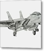 Tomcat Almost Home Metal Print by Nicholas Linehan