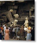 Tourists Watch Captive Polar Bears Metal Print by B. Anthony Stewart