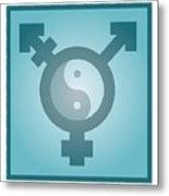 Transgender Balance, Conceptual Artwork Metal Print by Stephen Wood