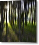 Tree Abstract Metal Print by Avalon Fine Art Photography