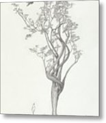 Tree Dancer In Flight Metal Print by Mark Johnson