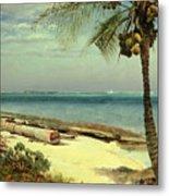 Tropical Coast Metal Print by Albert Bierstadt