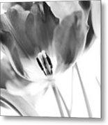 Tulips Metal Print by Silke Magino