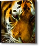Turbulent Tiger Metal Print by Ricky Barnard