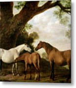Two Mares And A Foal Metal Print by George Stubbs