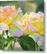Two Peace Rose Blossoms Metal Print by Sharon Freeman