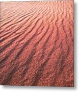 Utah Coral Pink Sand Dunes Metal Print by Ryan Kelly