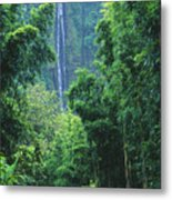 Waimoku Falls Metal Print by Dave Fleetham - Printscapes