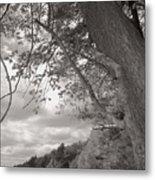 Walden Pond Metal Print by Heather Weikel