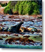 Warm And Fuzzy  Metal Print by Douglas Barnard