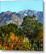 Wasatch Mountains In Autumn Metal Print by Tracie Kaska
