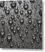 Water Drops Metal Print by Frank Tschakert