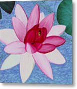 Water Lilly Metal Print by Loraine LeBlanc