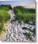 Wellfleet Beach Path Metal Print by Tammy Wetzel